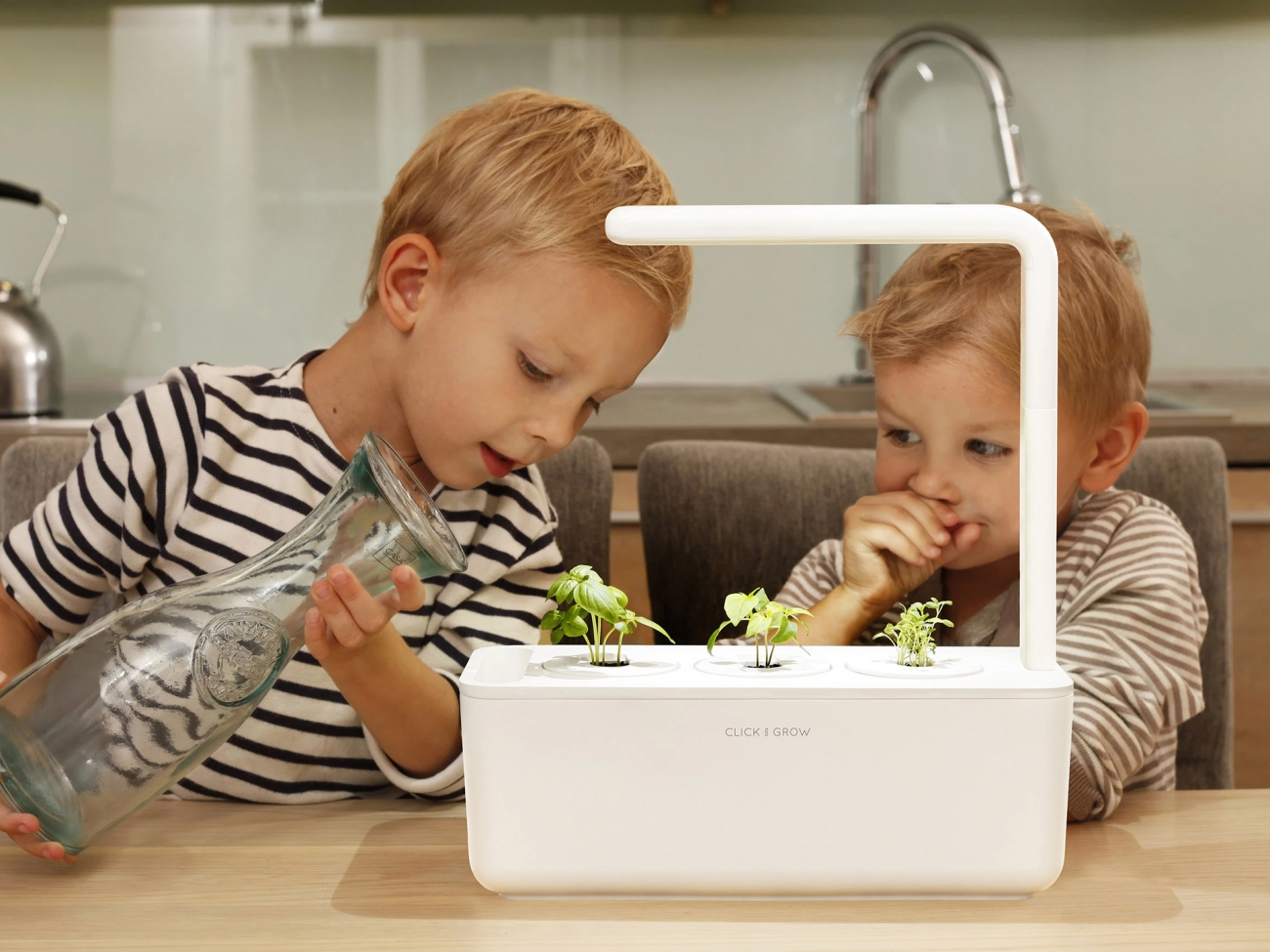 Click and Grow Smart Garden 3. «Умный» сад (2)
